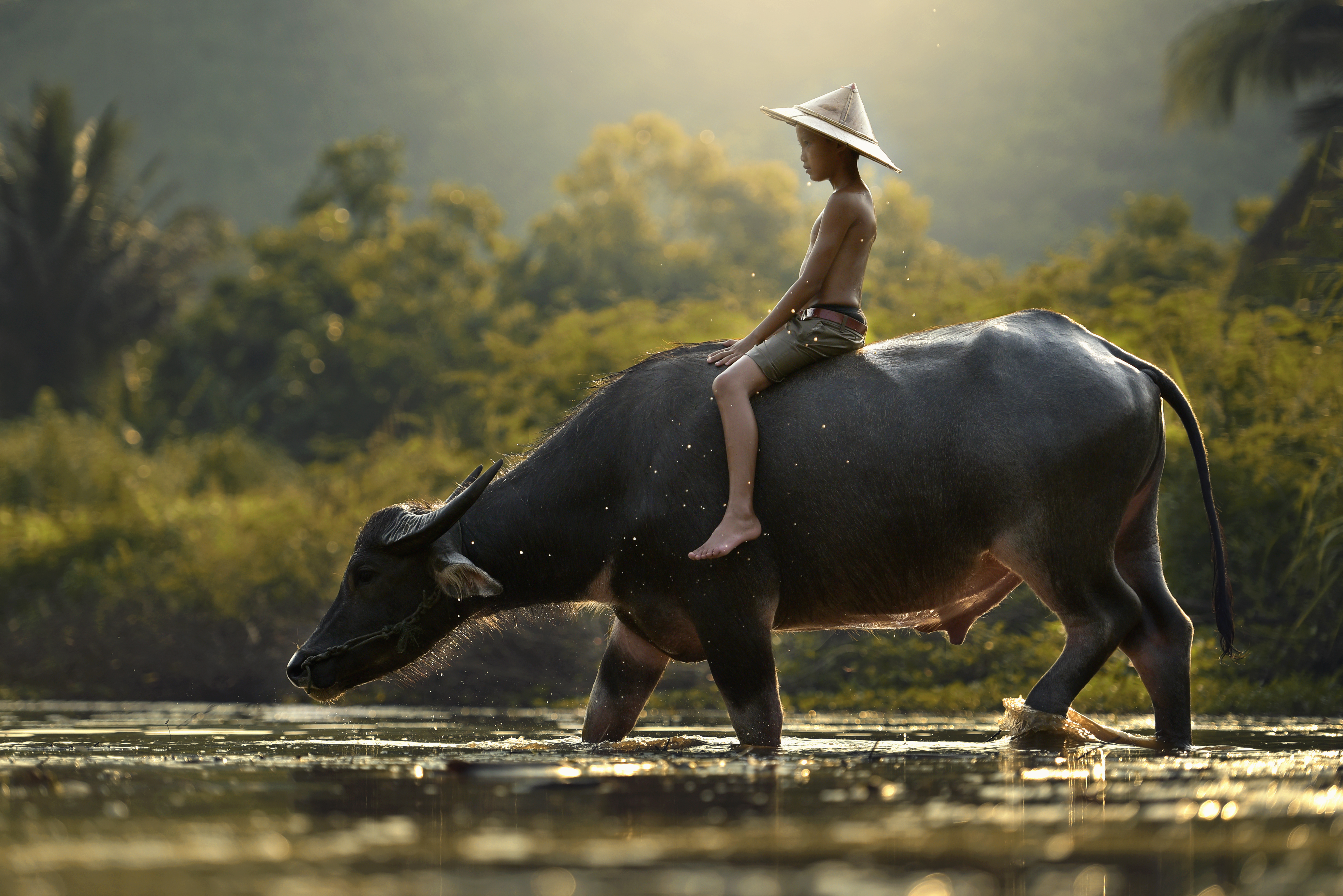 China's Growing Control of Cambodia: 5 Geopolitical Effects You Need to Know
