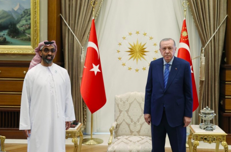 Why do Turkey and the UAE want to repair ties?